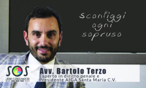 Terzo Bartolo